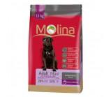 MOLINA (Молина) Adult Maxi сухой корм для взрослых собак крупных пород
