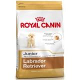 R.C. (Роял Канин) Labrador Retriever Junior сухой корм для щенков лабрадора до 15 месяцев 12кг+2кг