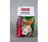 BEAPHAR XtraVital Mouse Food Корм для мышей 500 г. (12982)