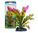PENN-PLAX Растение FLOWERING CRYPT 35 см. с грузом, красно-зеленое (P32CSU)