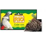 РИО Лакомство-игрушка Кедровая шишка для попугаев и других птиц