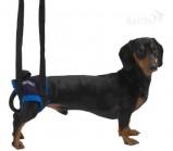 Kruuse  Walkabout harness вожжи на задние конечности